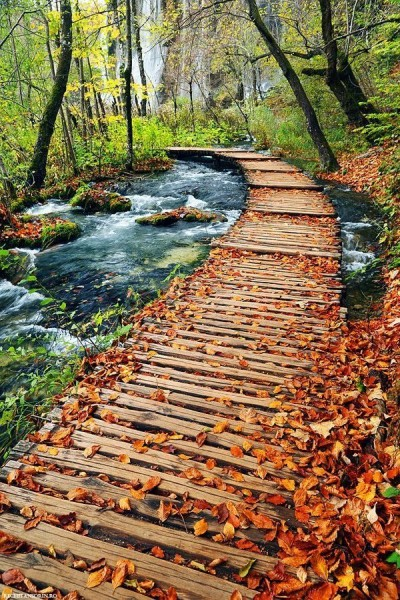 Autumn in Plitvice L