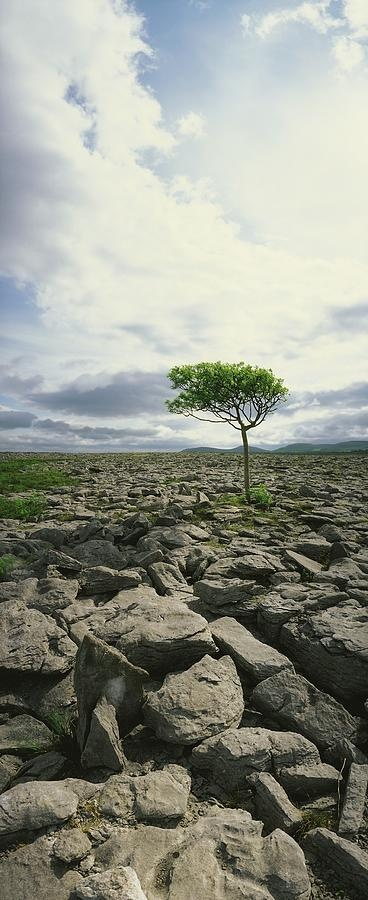 The Burren, On Kinva